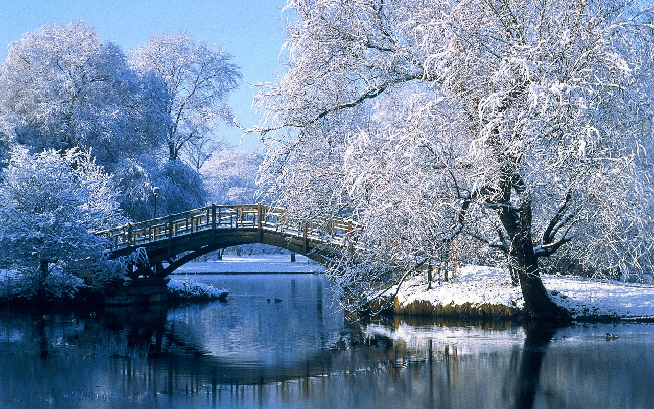 3D Wallpapers Animated Animation Wallpapers Winter Scenes 1280x800