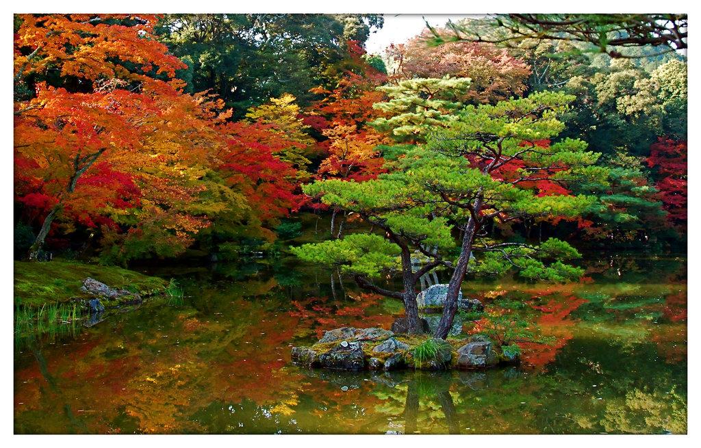 Windows Vista Wallpaper Japan Garden Wallpaper 1024x655