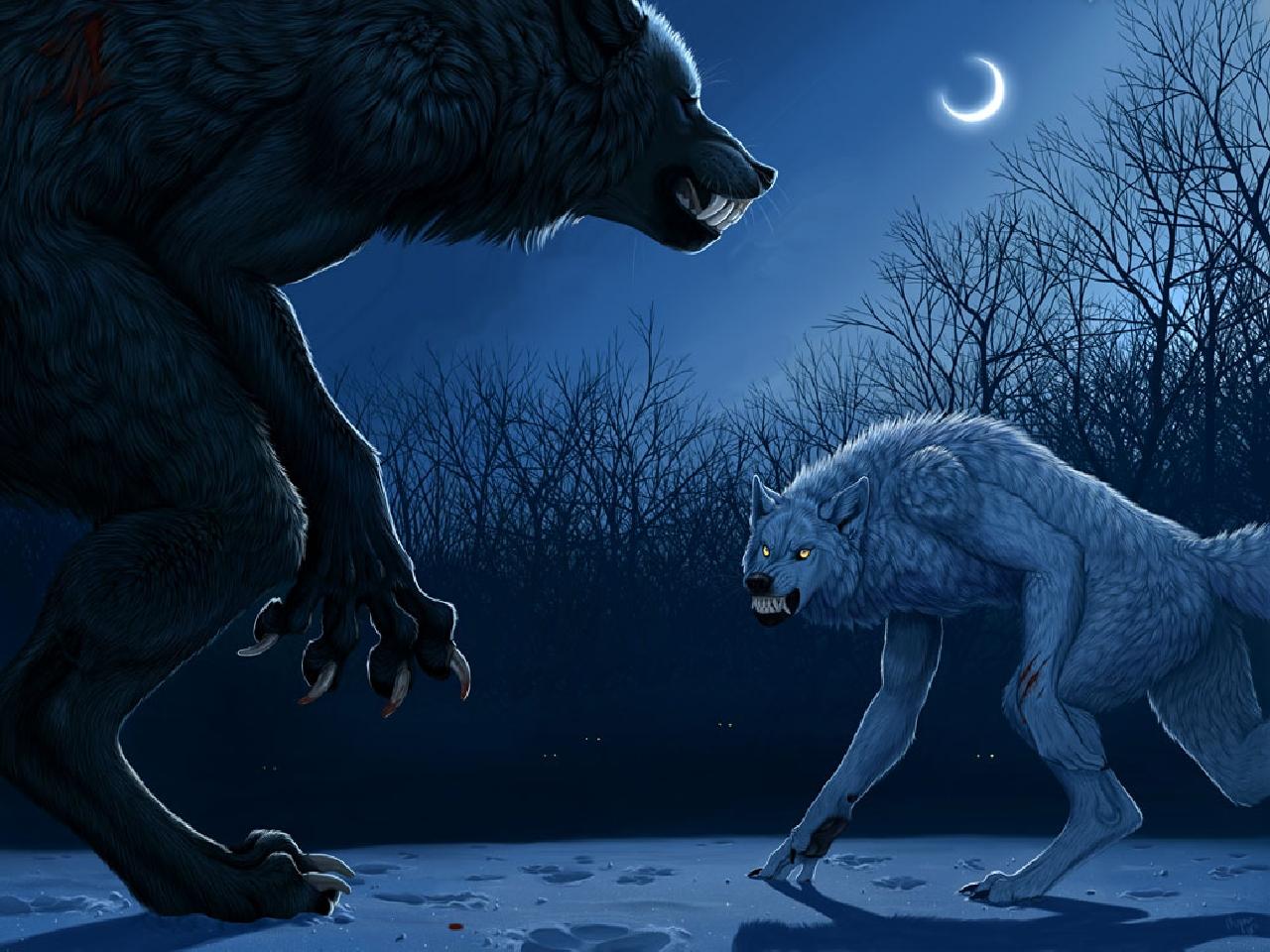Werewolf Computer Wallpapers Desktop Backgrounds 1280x960 ID 1280x960