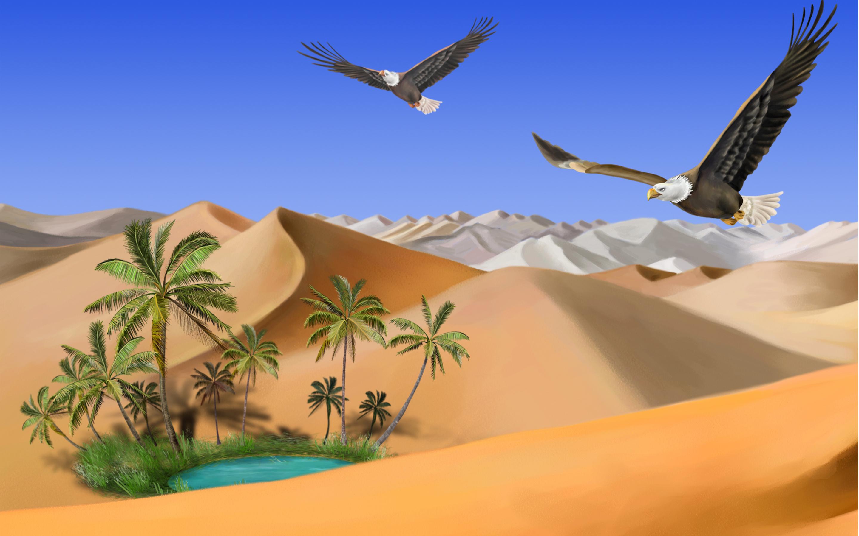 Desert sand eagles oasis wallpaper   ForWallpapercom 2880x1800