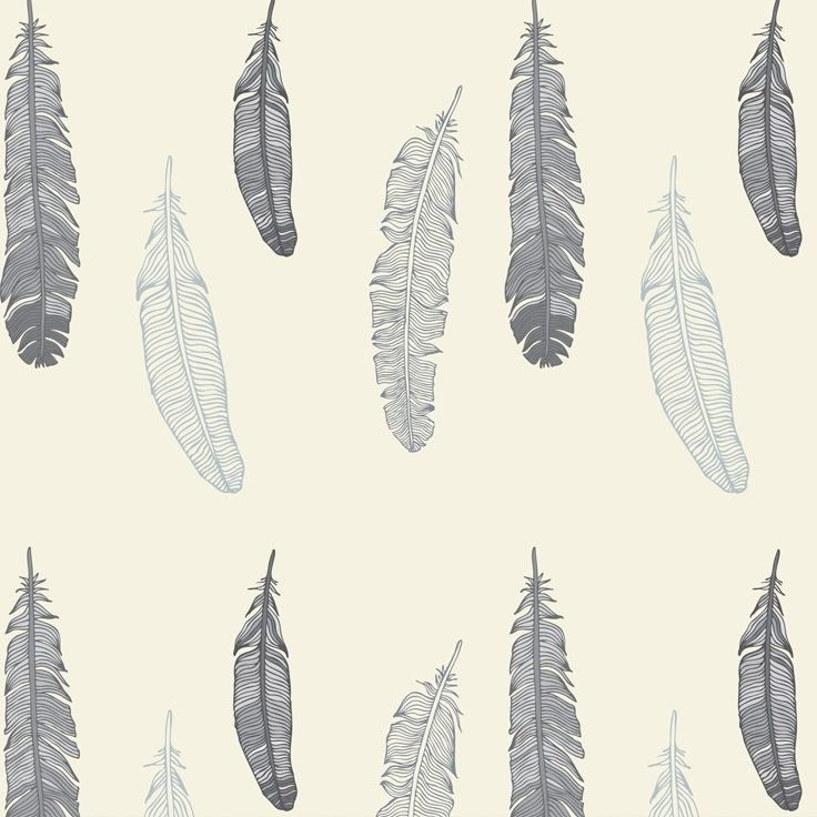 wallpaper with feathers wallpapersafari