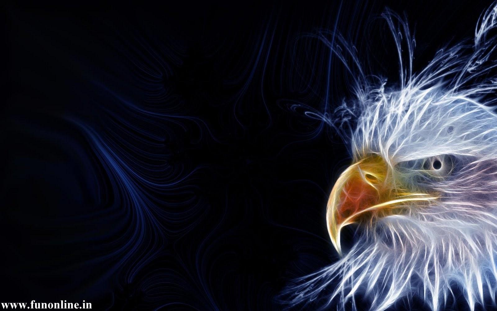 American Eagle Hd Wallpaper Gebyur 1600x1000