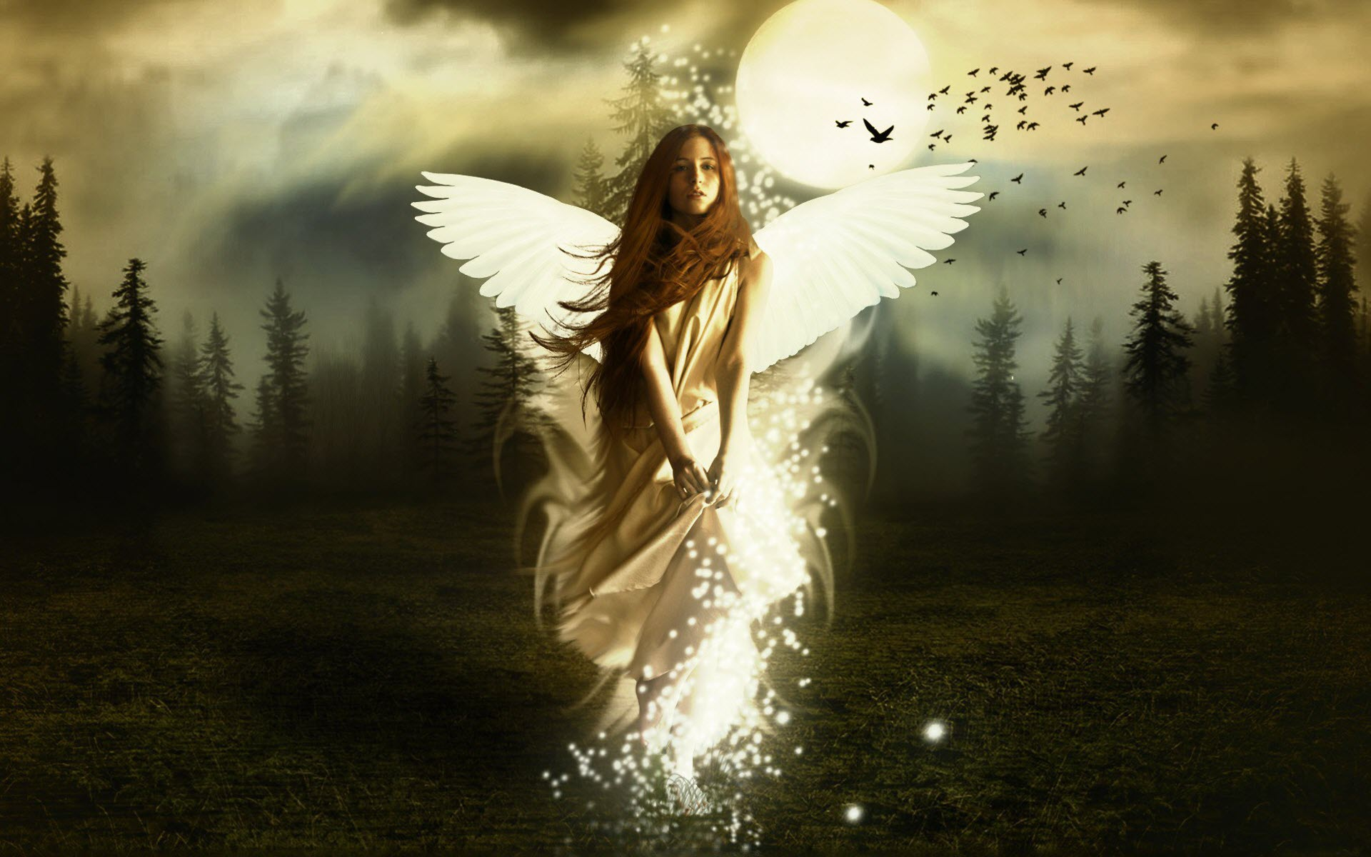 Wallpaper Of A Angel Girl In Forest Wallpaper World 1920x1200