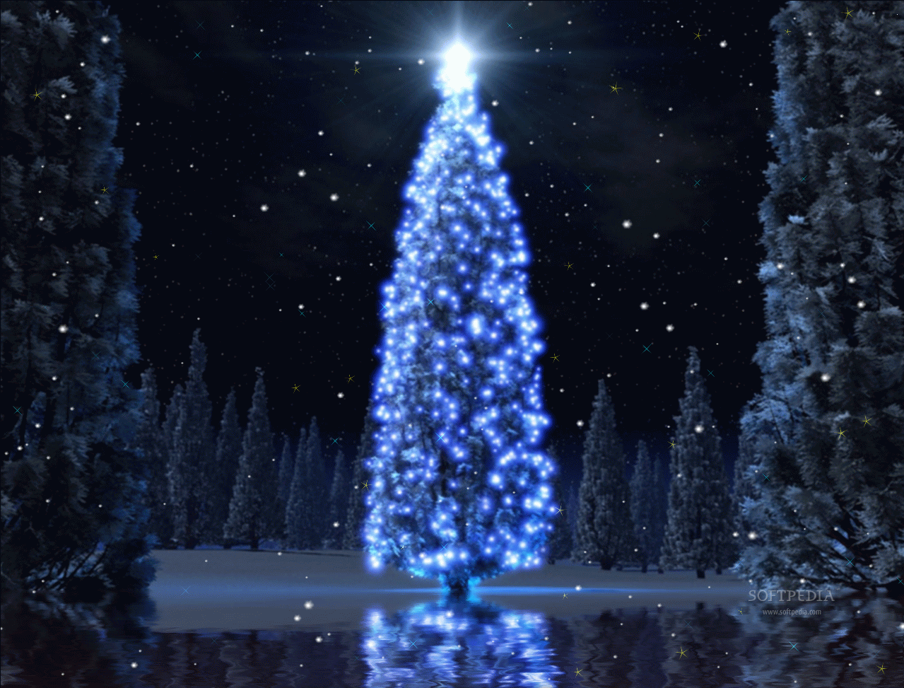 Christmas Tree Wallpaper Animated Images amp Pictures Becuo 1279x973
