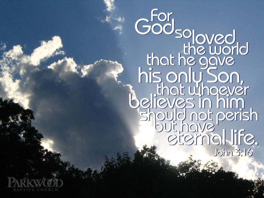 John 3 16 Bible Verse Background Wallpapers 850x638