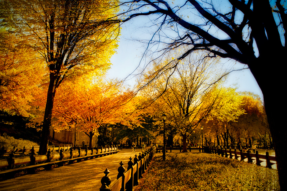 Central Park in Fall Blurbomat 940x627