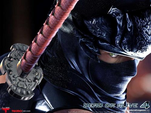 wallpapers games barbie games dead or alive 4 hd dead or alive 4 hd 500x375