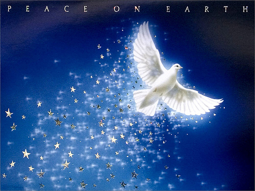 Christmas Dove Peace on Earth Christmas Wallpaper Flickr   Photo 500x375