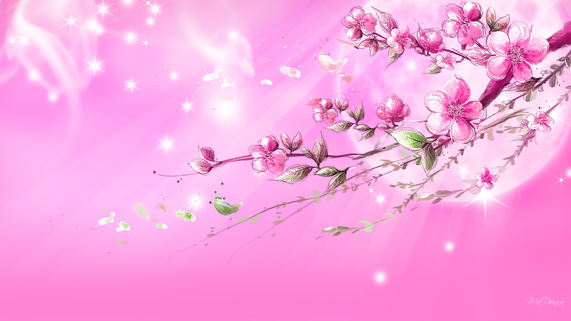 35 High Definition Pink WallpapersBackgrounds For 1920x1080