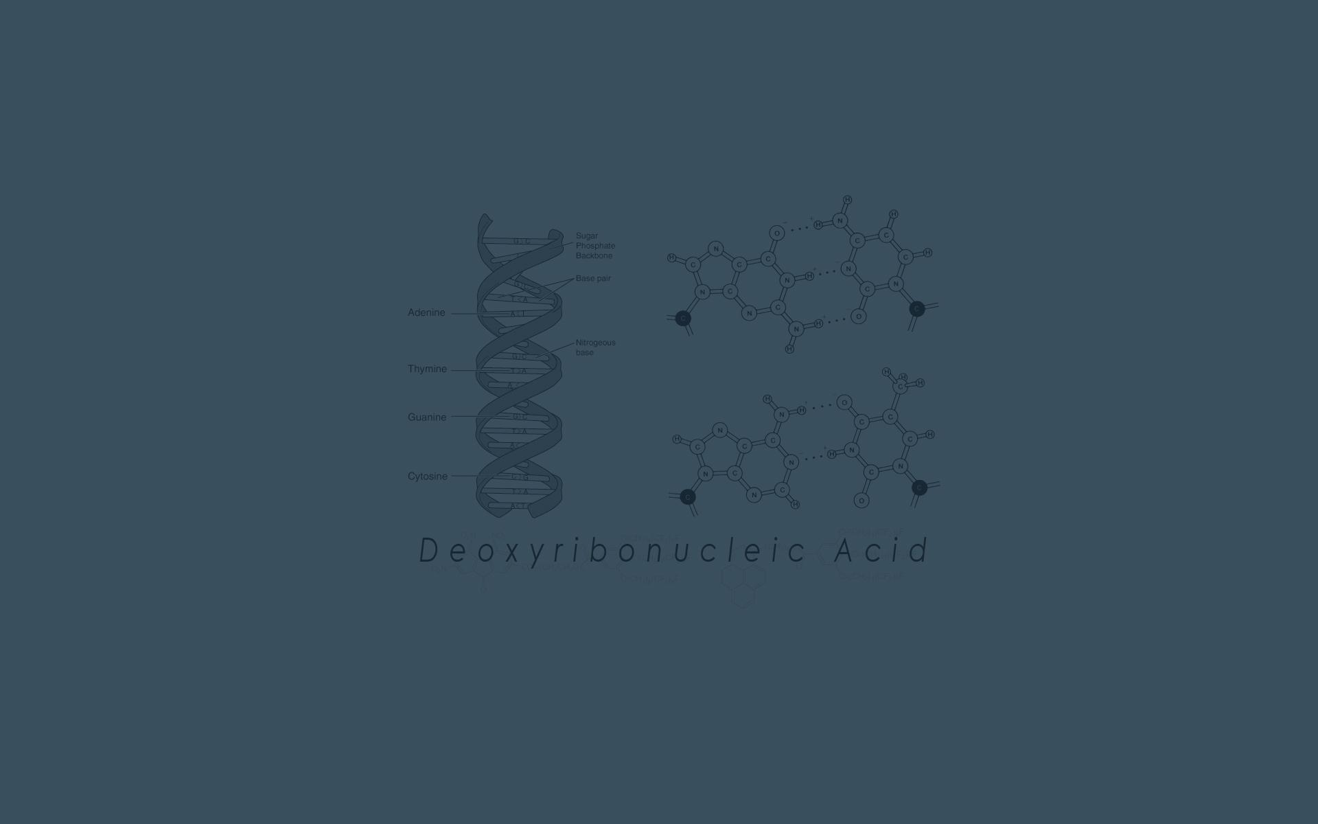 Biology Wallpaper Background - WallpaperSafari | 1920 x 1200 jpeg 113kB