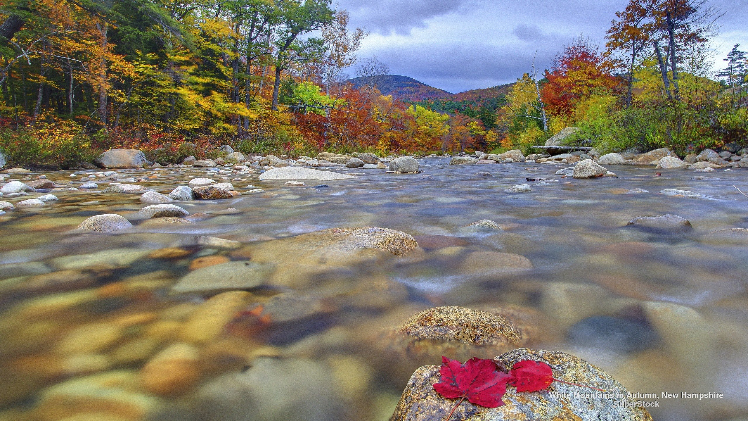 New Hampshire Wallpapers 2560x1440 px 2B12E56 WallpapersExpertcom 2560x1440