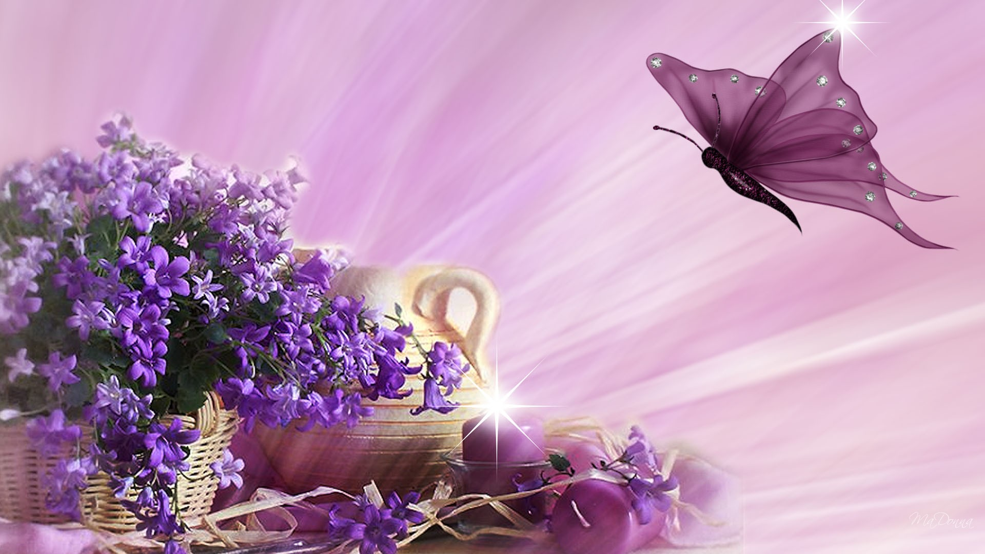 background PC backgrounds Flowers and butterflies 1920x1080