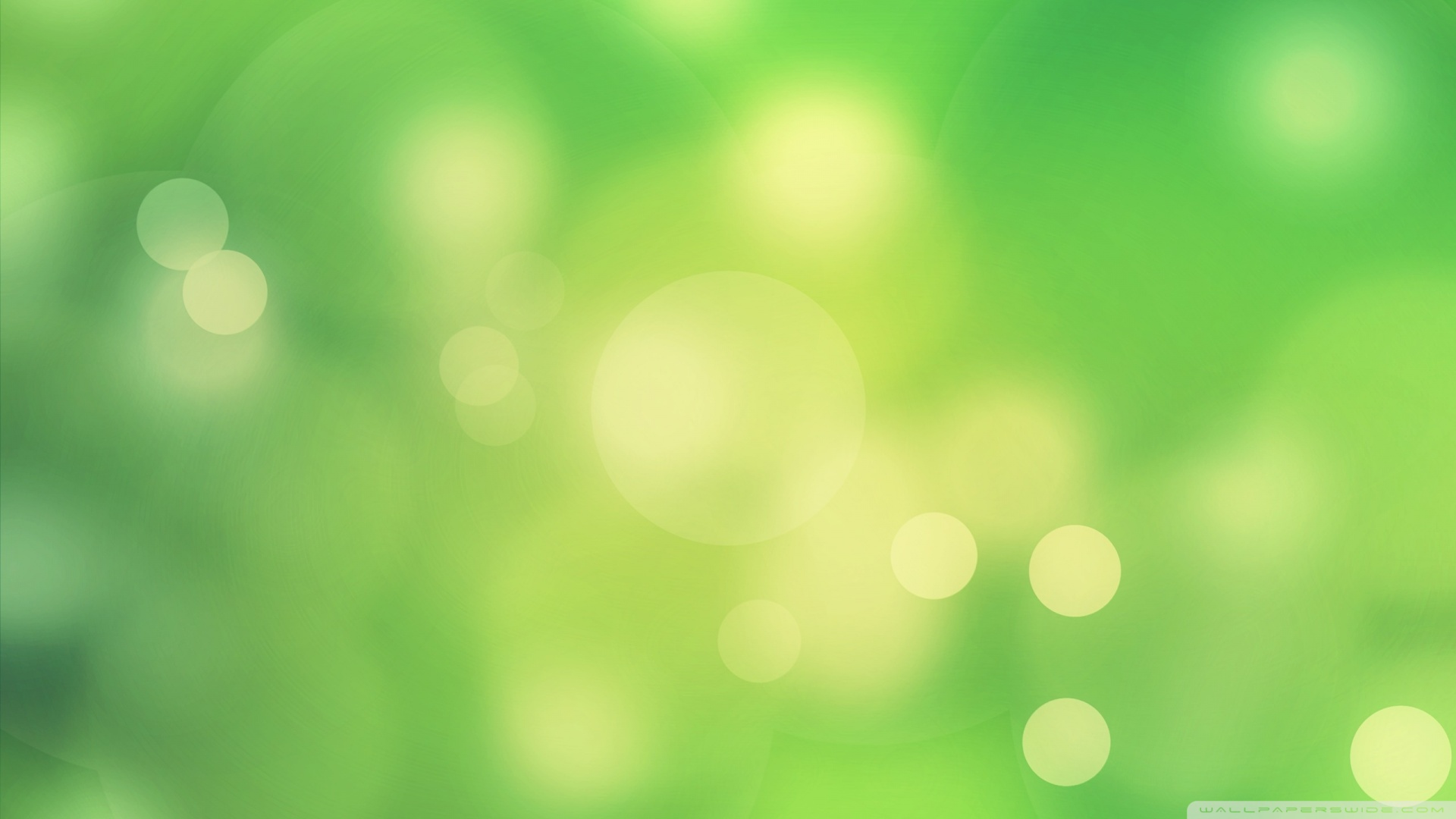 Download Green Background 2 Wallpaper 1920x1080 1920x1080