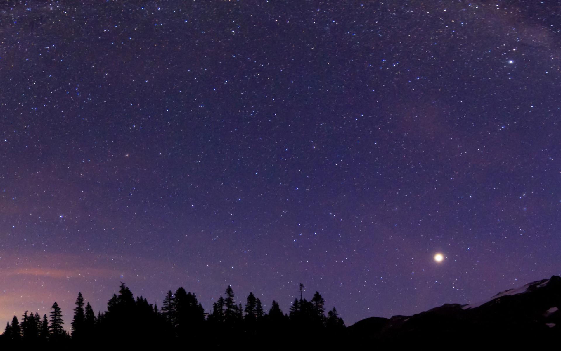 Sky Full Of Stars Wallpaper