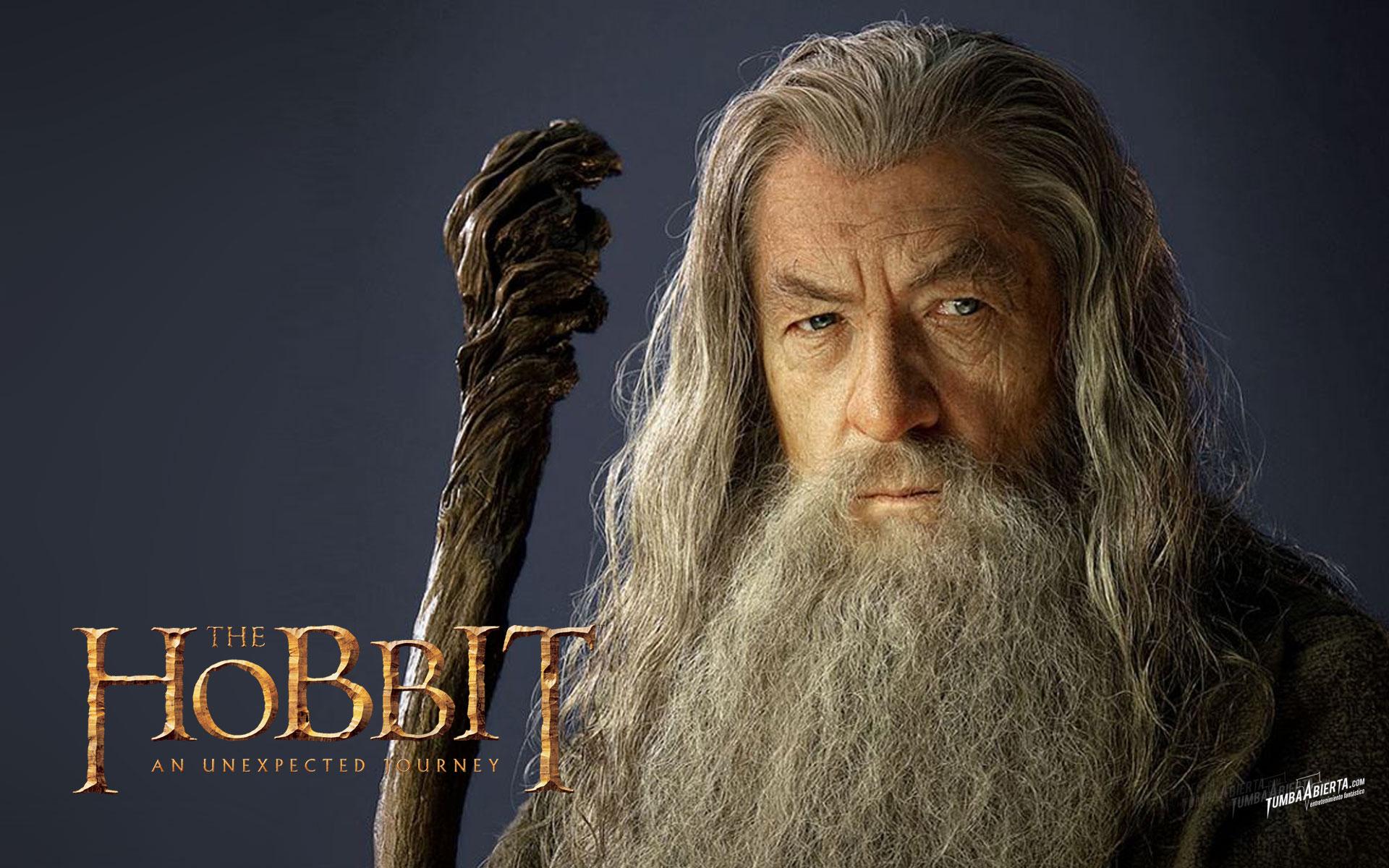 Hobbit Gandalf wallpaper 222962 1920x1200