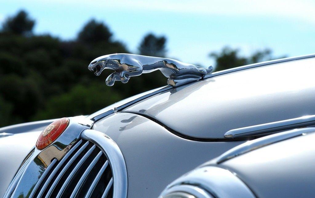 Free Download Jaguar Car Logo Car Wallpaper Cars Wallpapers