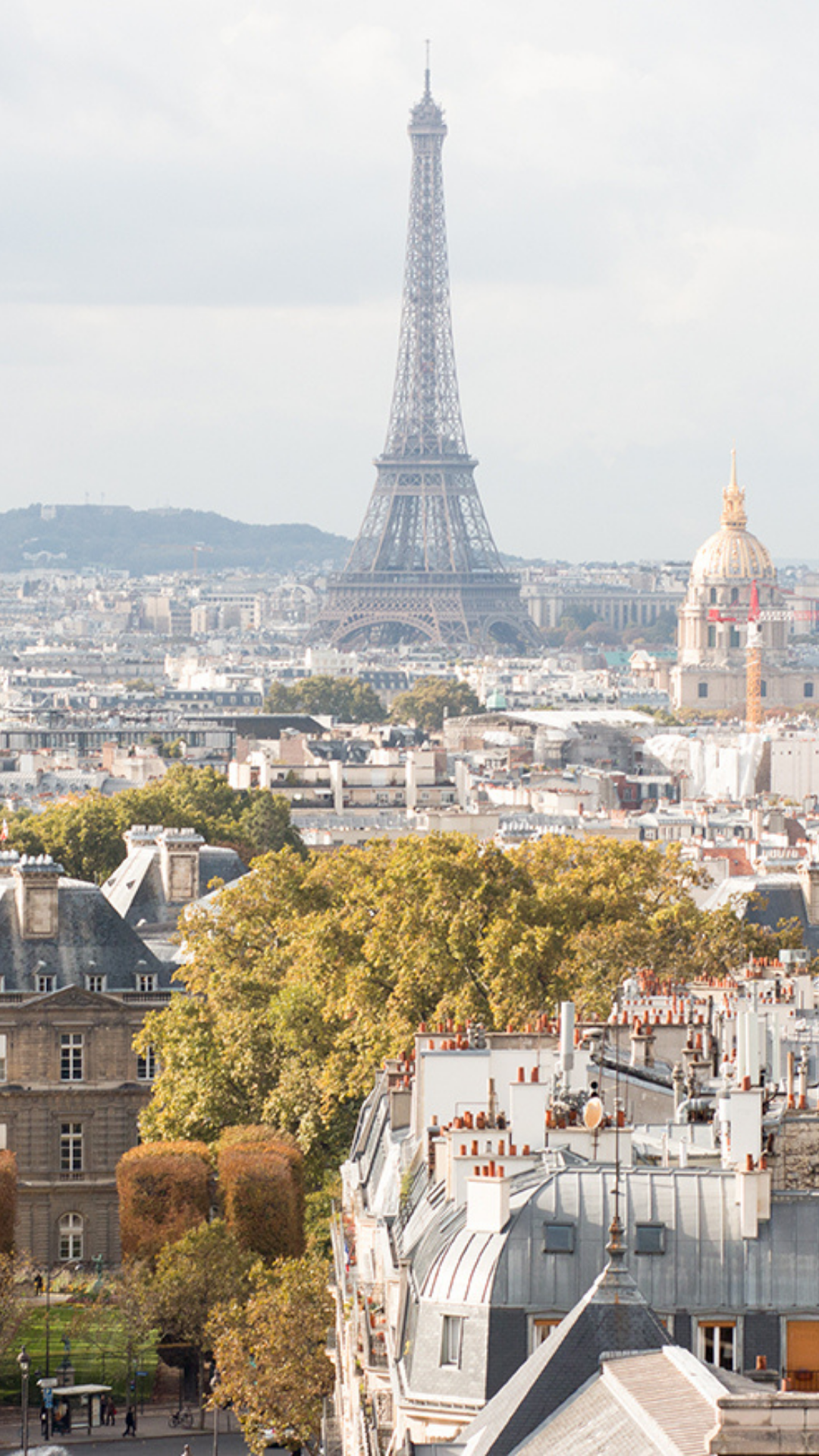 Fall Backgrounds for Your iPhone and Computer Every Day Parisian 1080x1920