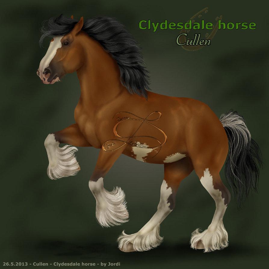 clydesdale horses wallpaper wallpapersafari