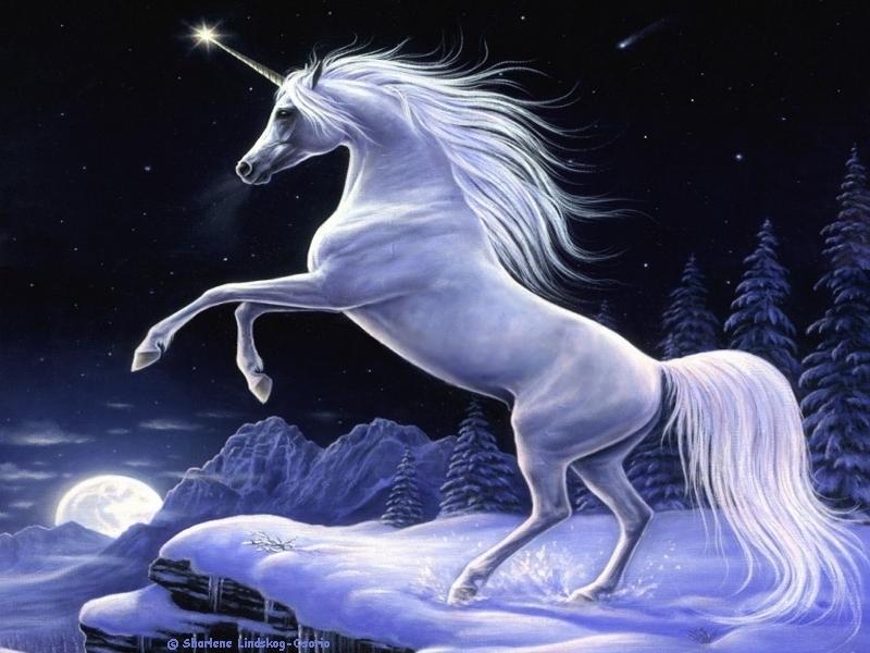 abstract fantasy Moonlight Magic Unicorn Sharlene Lindskog Wallpaper 800x600