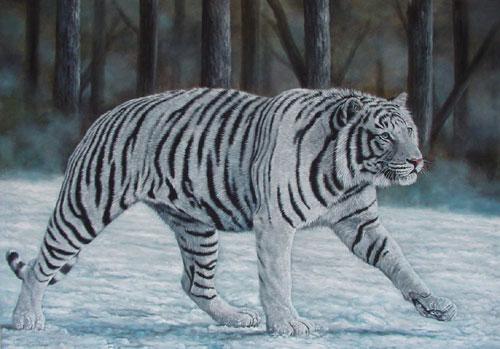 White Tiger 500x349