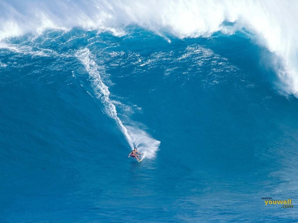 Surfing a Giant Wave Desktop Wallpaper and make this wallpaper for 1024x768