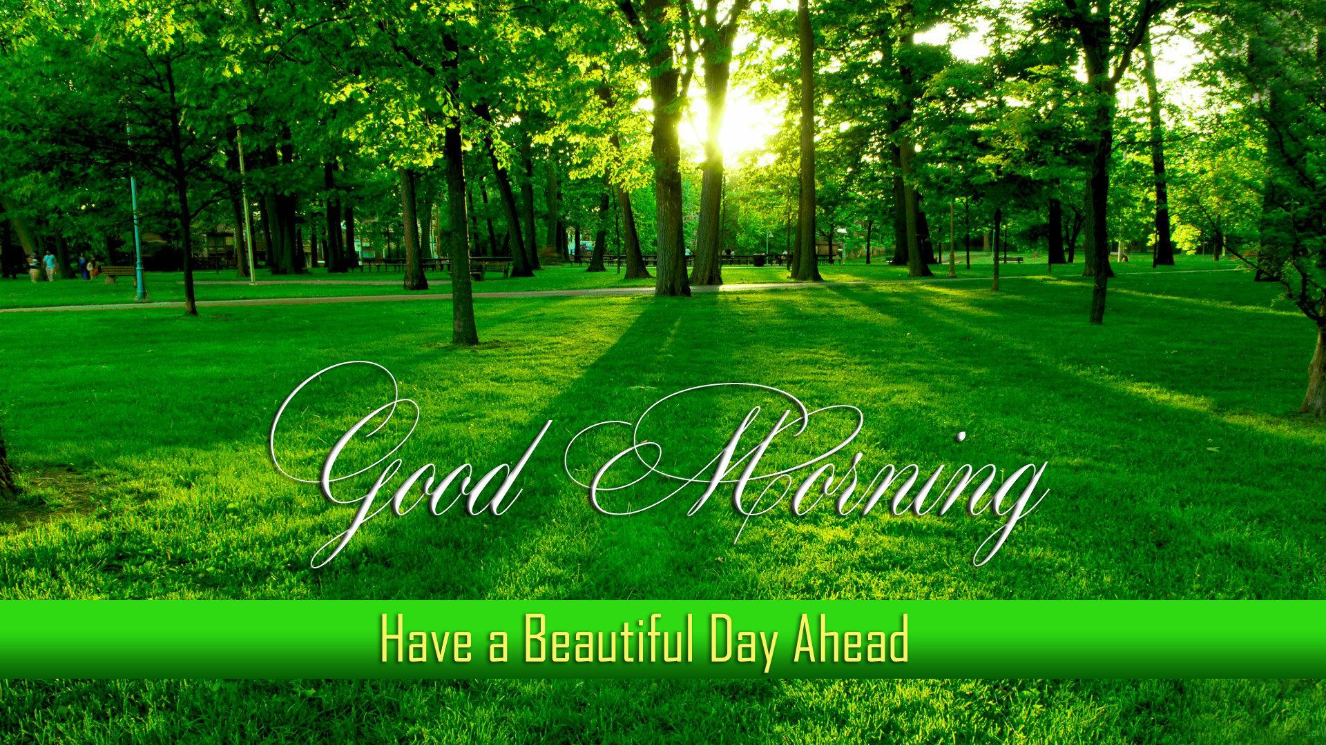 Beautiful Good Morning Wallpaper Wallpapersafari