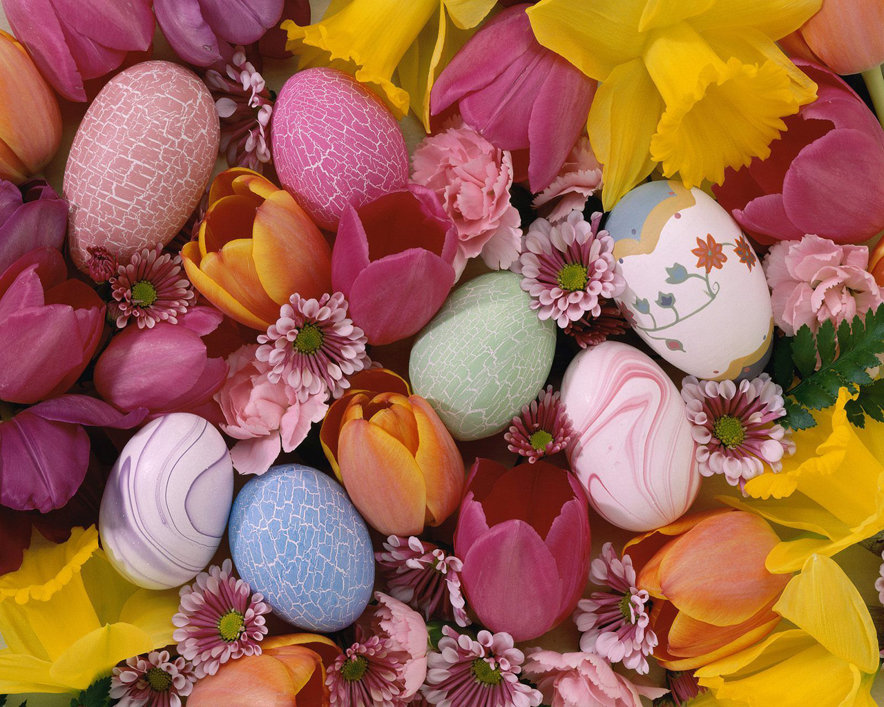 Free Download Wallpapers Of Flowers Wallpaper Flower