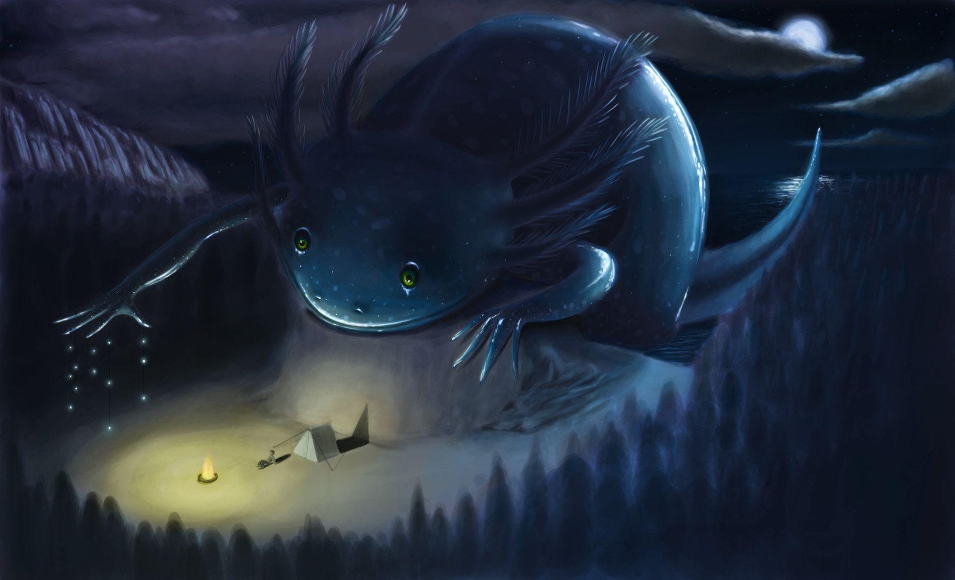 Axolotl Wallpapers  Axolotl Creatures Mystical 1920x1165