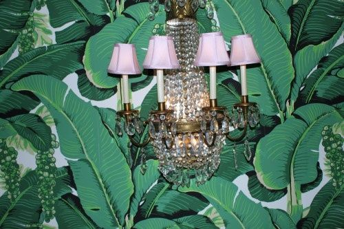The Glam Pad Marvelous Martinique Banana Leaf Wallpaper vs the 500x333