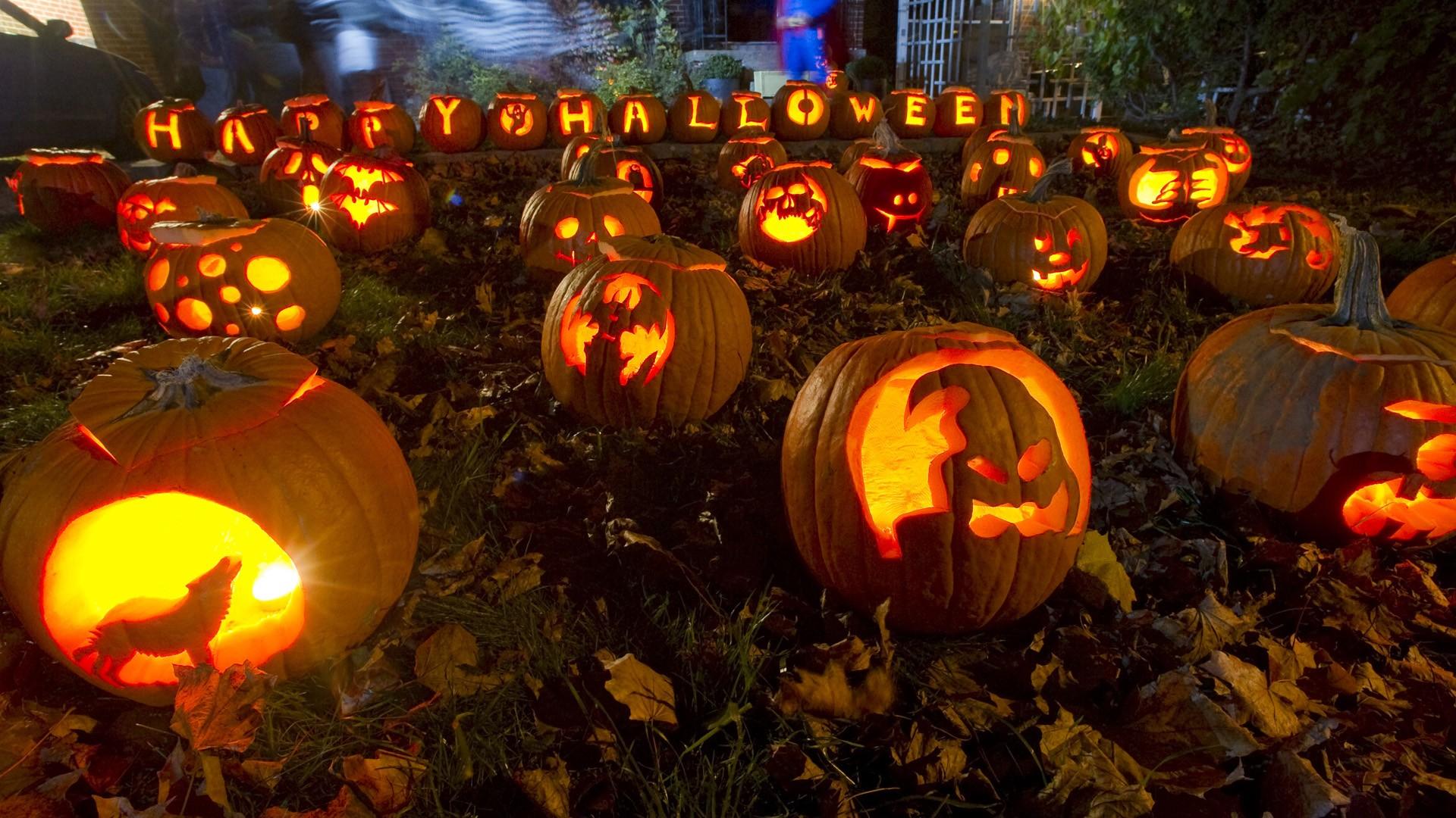 Halloween Pumpkin Wallpaper 826466 1920x1080px by Naomi Merdinger 1920x1080