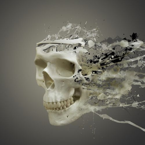 3D CGI Skull Wallpaper For Samsung Epic 500x500