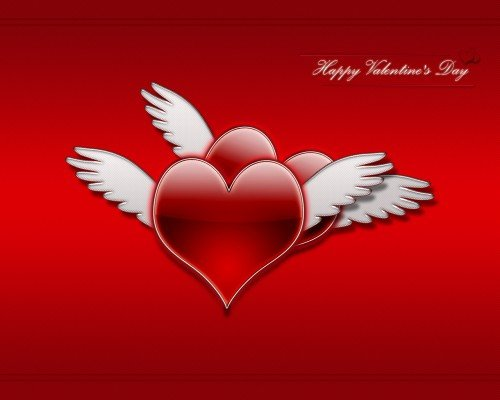 Valentines Day Wallpapers Valentine Hearts With Wings Wallpapers 500x400