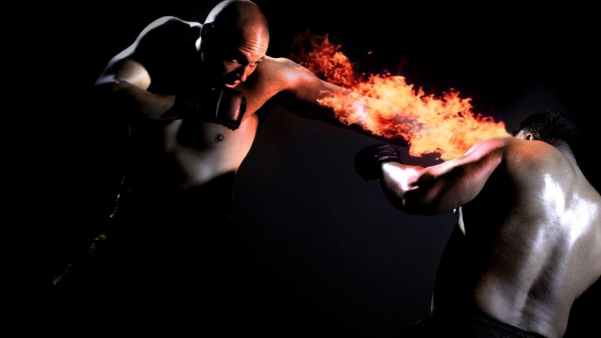 UFC mma martial arts battle e wallpaper 1920x1080 171334 1920x1080