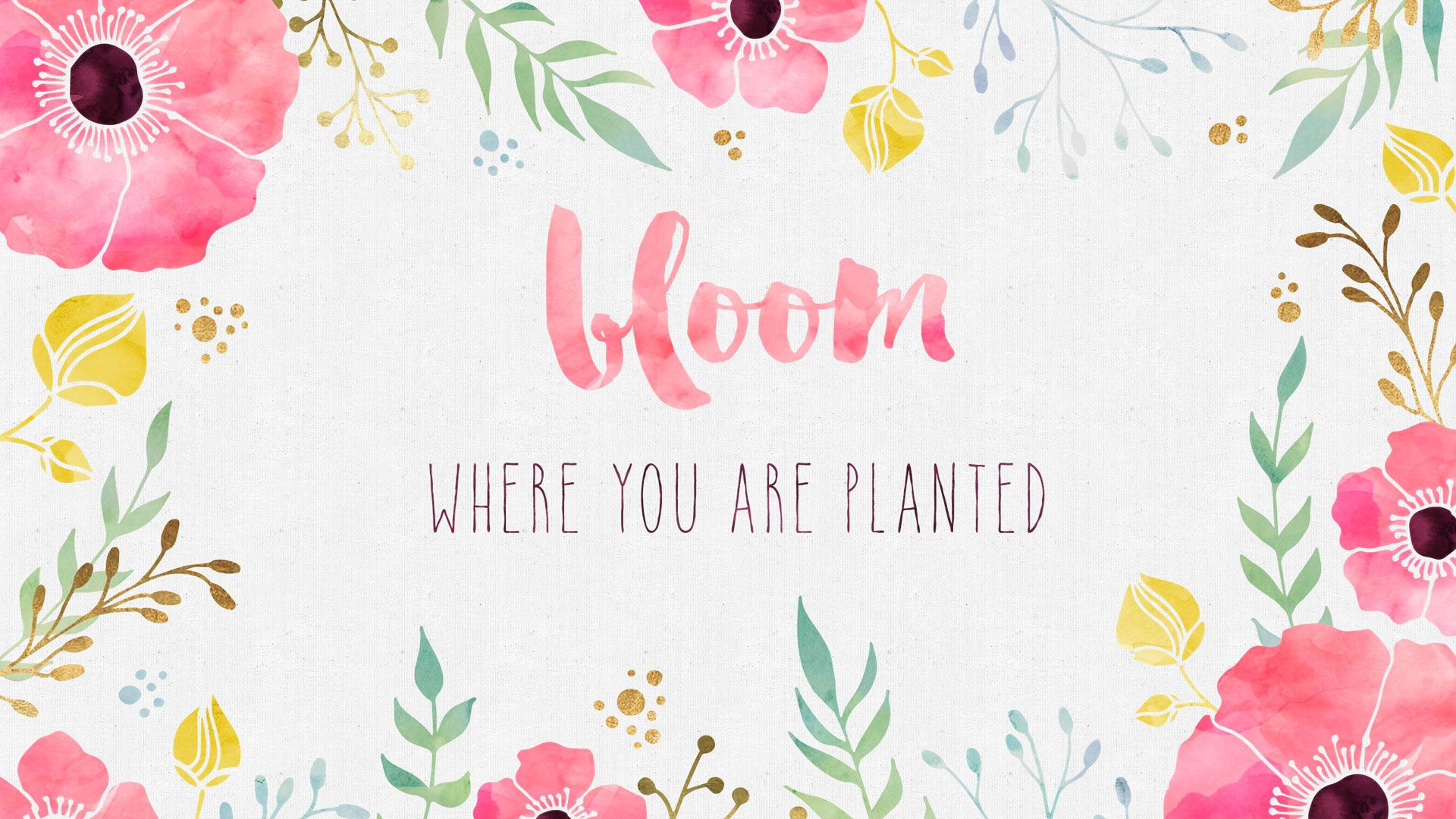 Desktop Wallpaper   Bloom Where you are Planted Cute 1920x1080