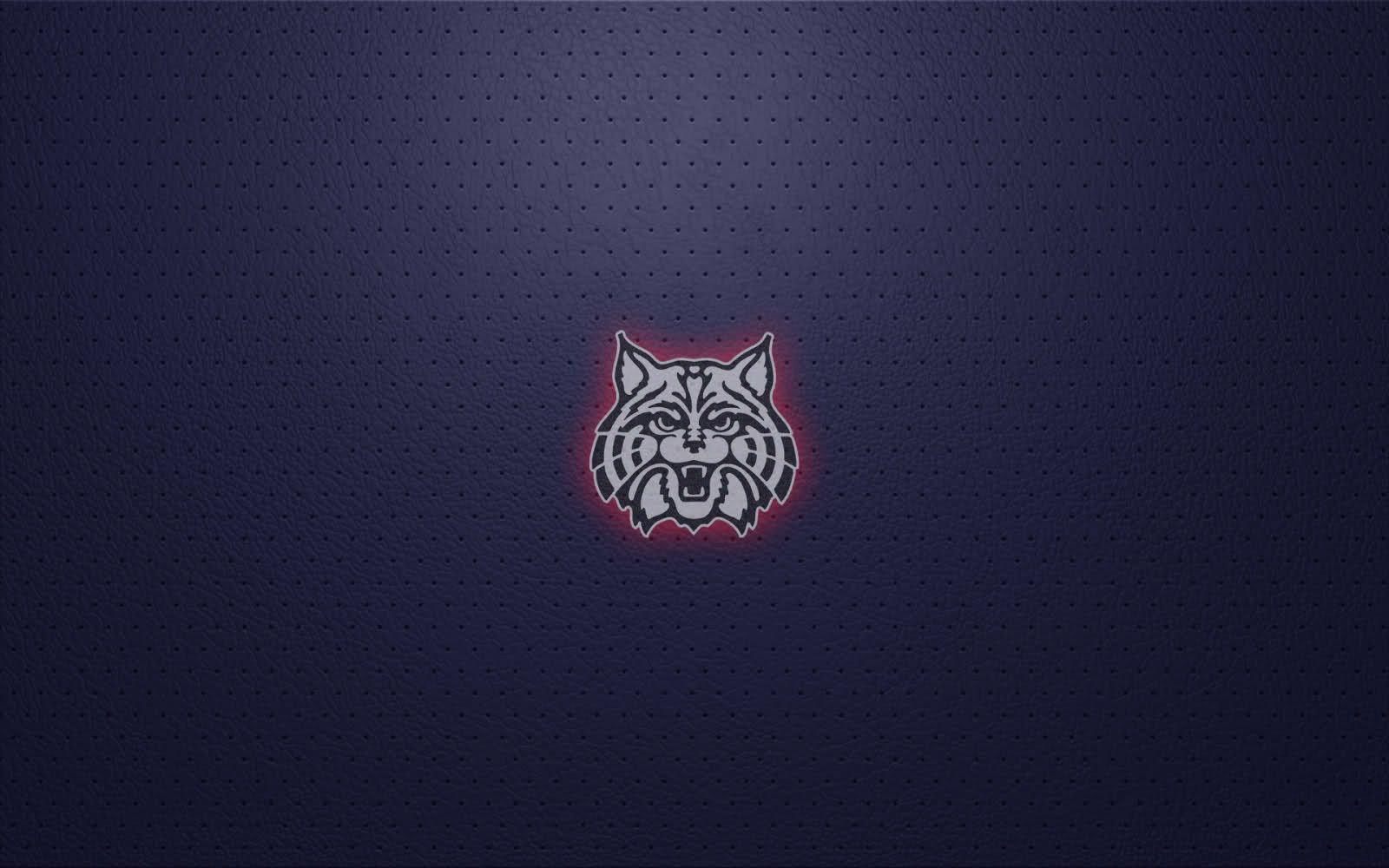 Arizona Wildcats Iphone Wallpaper University of \x3cb\x3earizona 1600x1000
