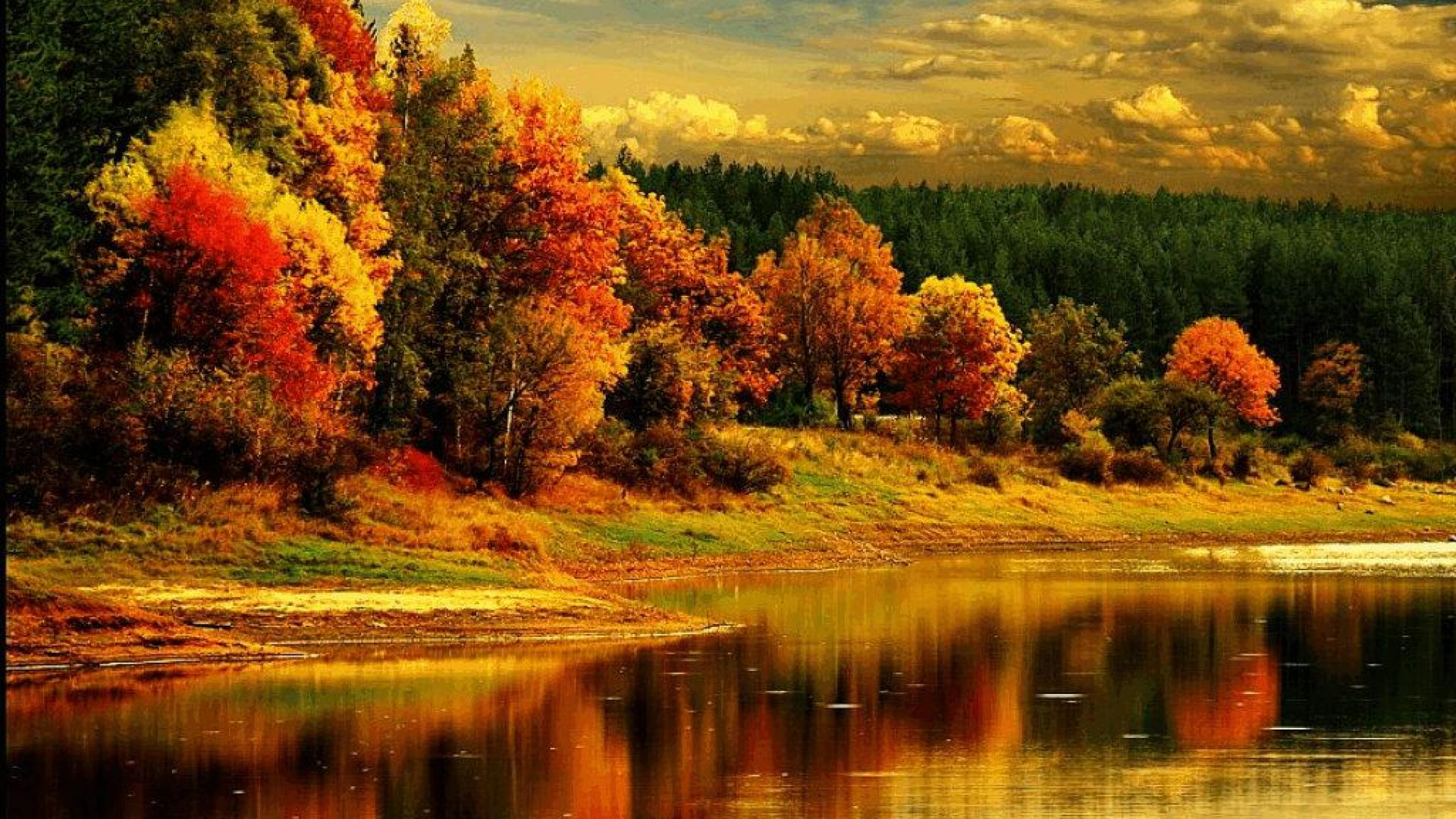 Fall Colors Wallpaper Related Keywords & Suggestions ...