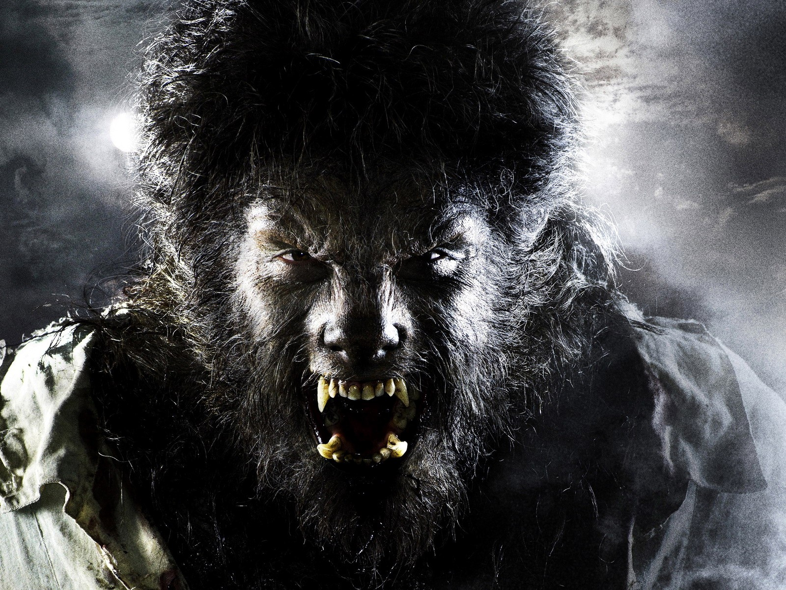 Scary Werewolf Wallpaper wallpaper wallpaper hd background desktop 1600x1200