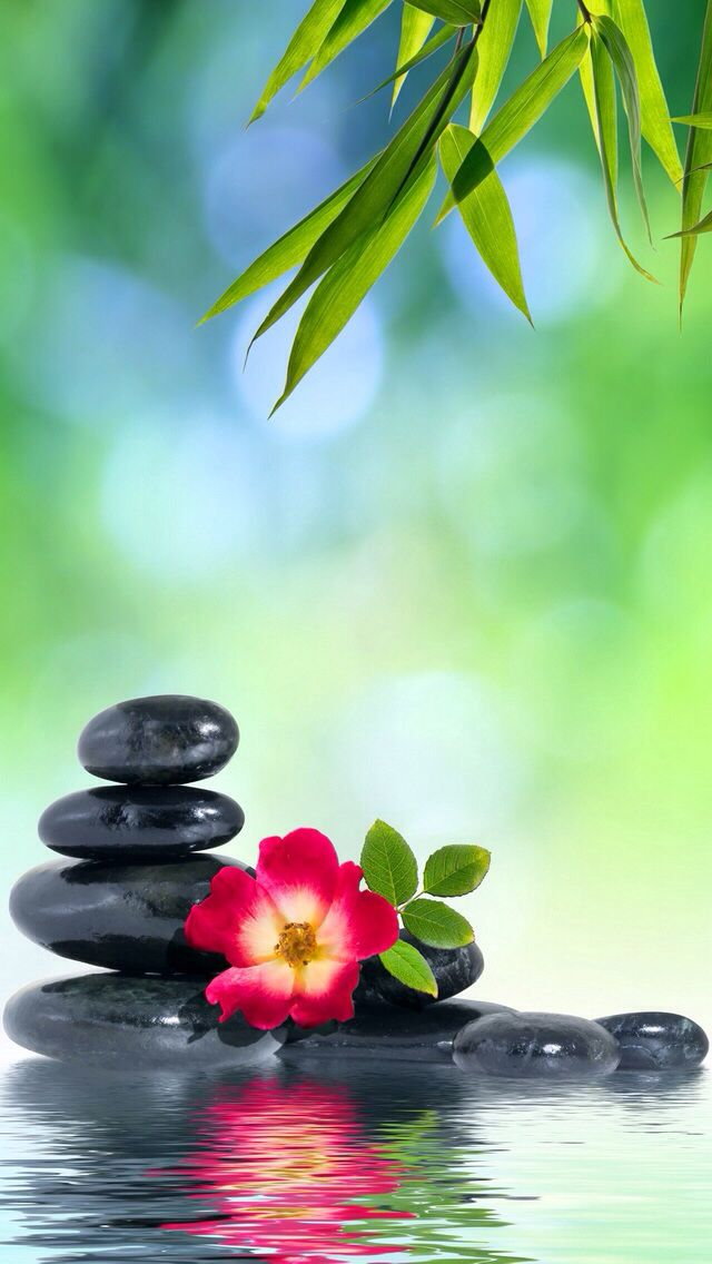 ZEN IPHONE WALLPAPER BACKGROUND Zen background Zen wallpaper