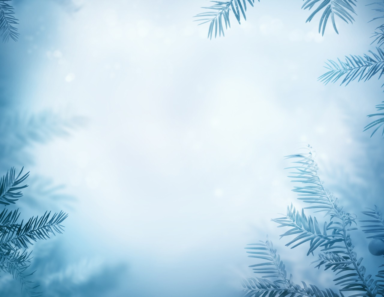 Winter Background 10png 1280x992