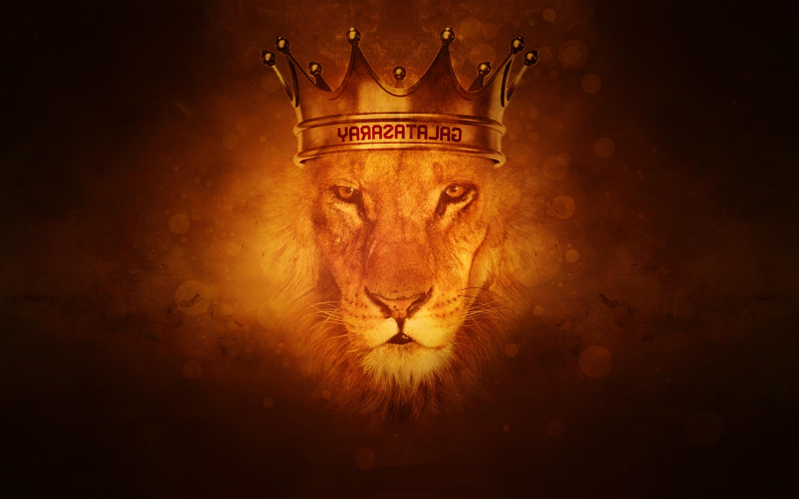 Beautiful Aslan Narnia Background wallpaper23 2560x1600