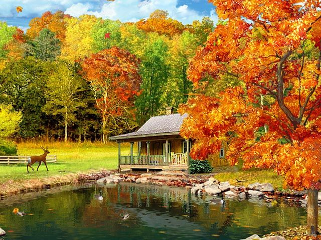 Fall Scenery Desktop Wallpaper 3D Falling Leaves Animated Wallpaper 640x480