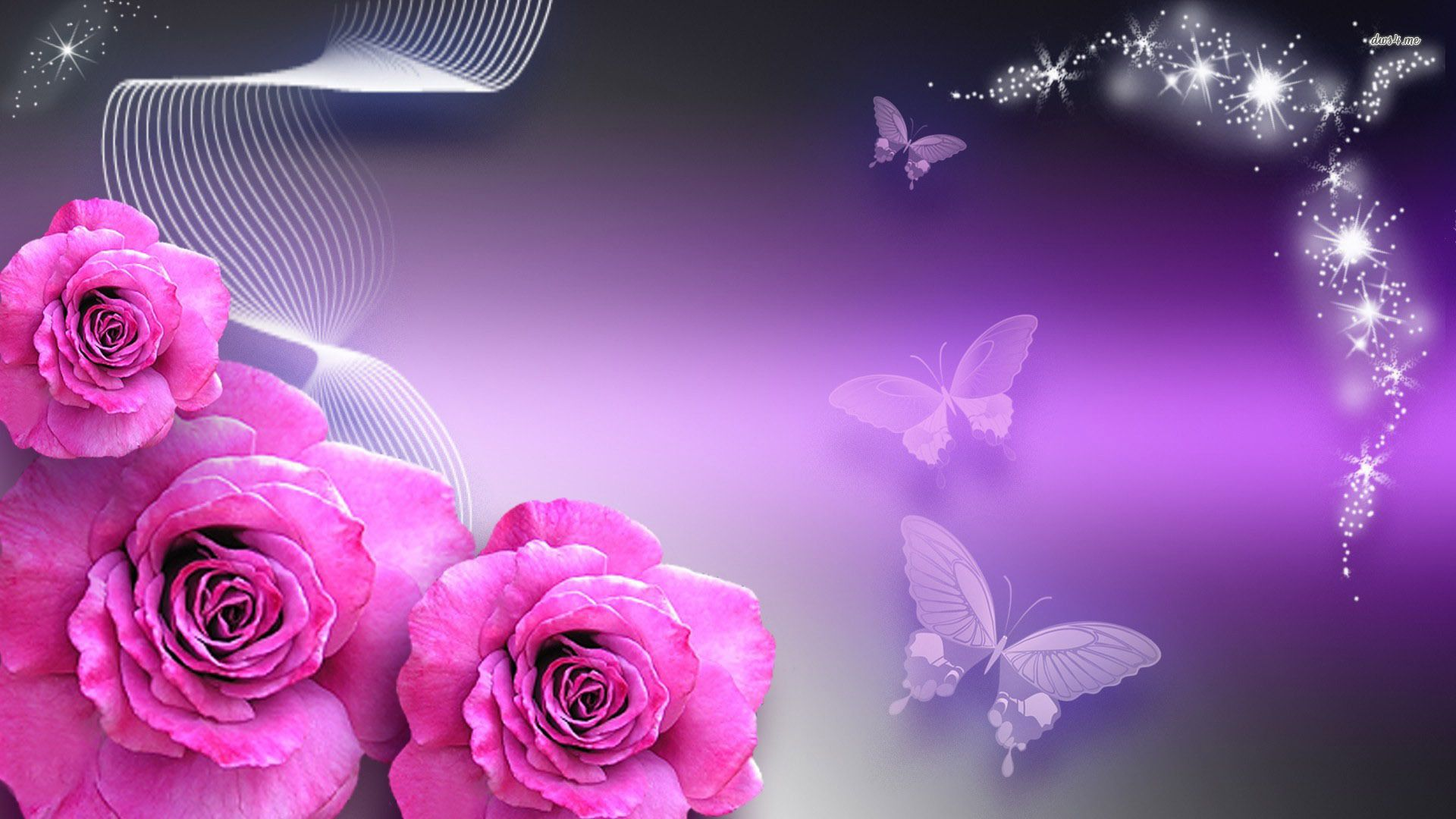 Pin by Marges 5 Bling on this is great Purple roses wallpaper 1920x1080
