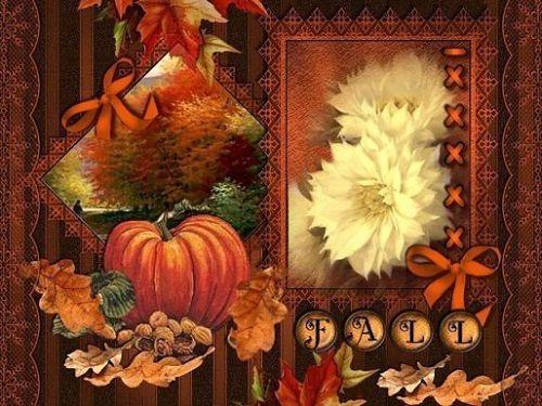 Autumn Pictures Images Photos 500x375