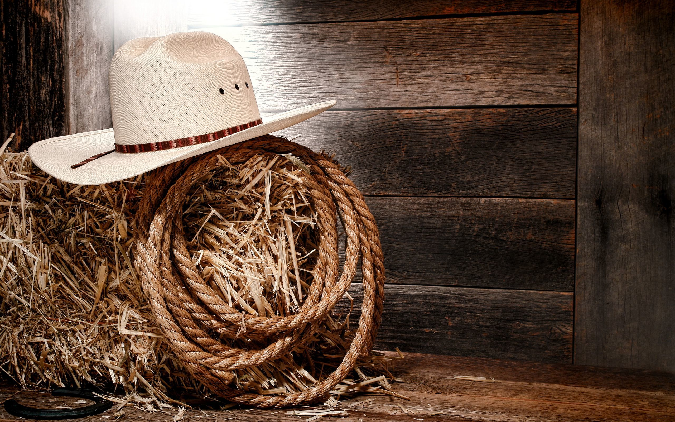 Western Straw Rope Presentation Backgrounds for Powerpoint 2560x1600