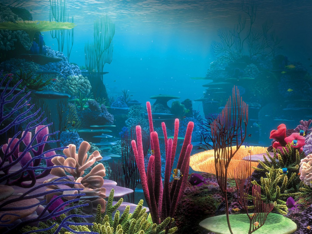 Life in Coral Reef Wallpaper 1024x768