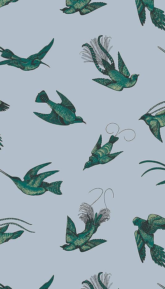 Tropical Birds Wallpaper Vintage 1950s exotic birds design by Una 534x935