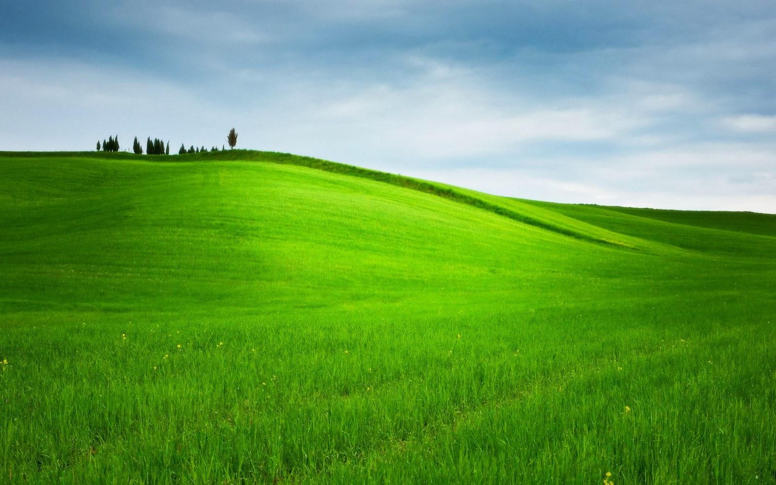 hills wallpapers grassy hills desktop wallpapers grassy hills desktop 1600x1000