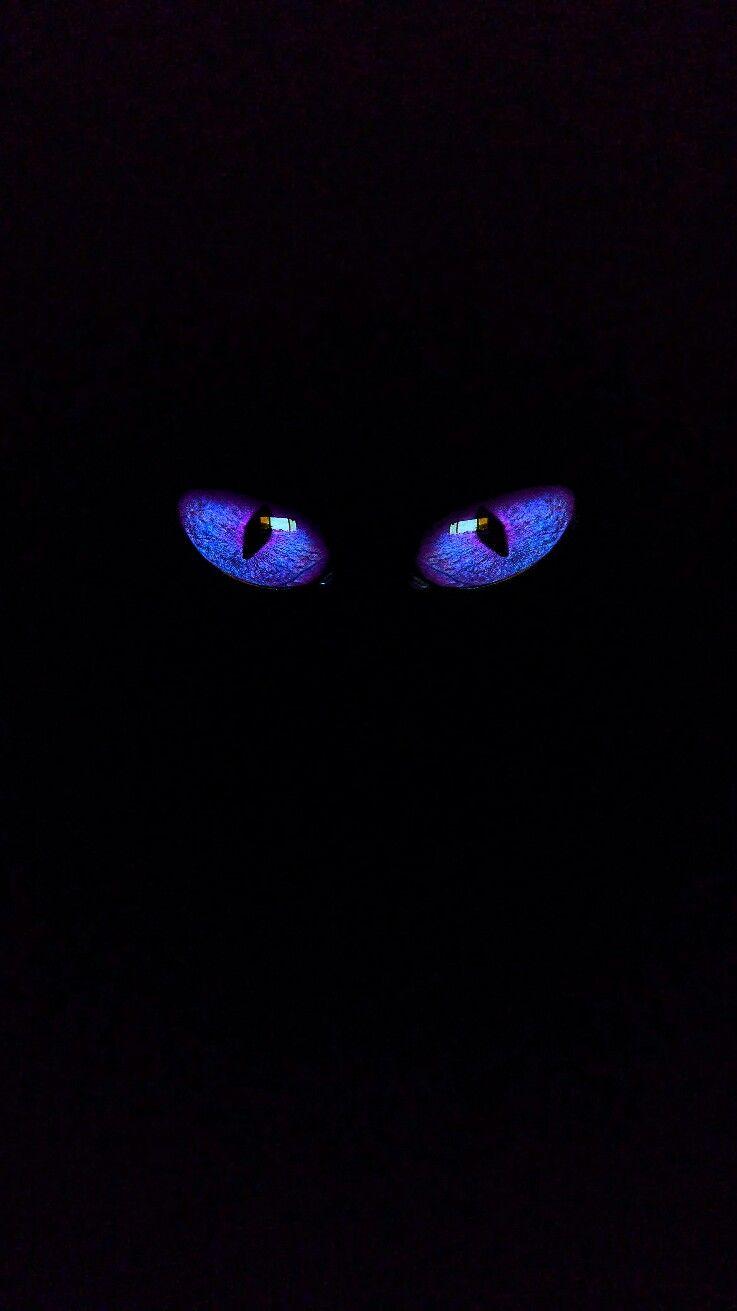 iPhone vertical wallpaper eyes 2 blue iPhone Black wallpapers in 737x1311