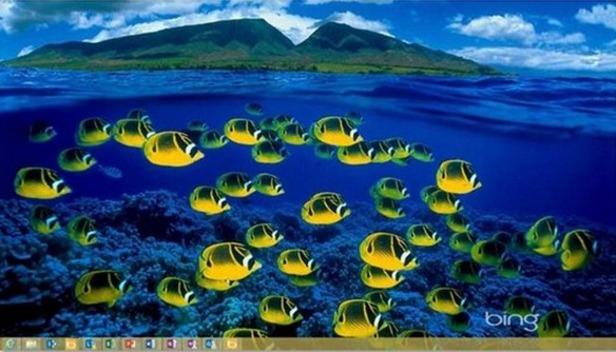 Bing Desktop Expands To More Windows Versions Languages   WebProNews 616x352