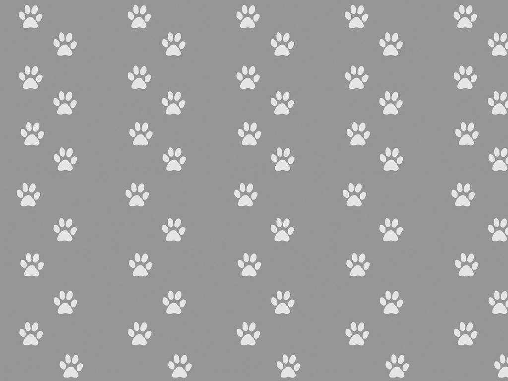 Dog paw wallpaper